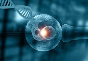 اختبارات تشخيصية للامراض